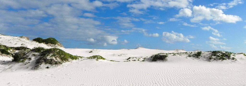 Beispiel Frontbild Südafrika 5